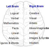 Are you Right-brained? Left-brained? Take the brain test!