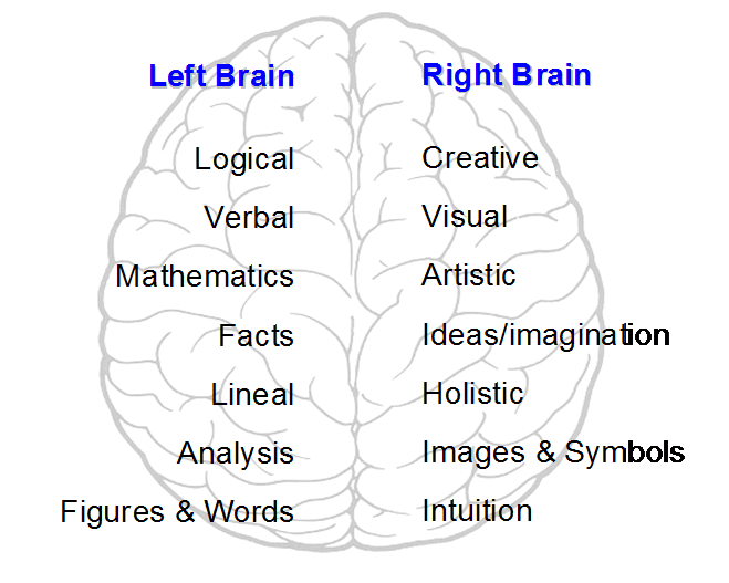 Left-and-Right-Brain
