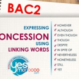 "Linking Words to express ""Concession""  with Useful Examples"