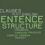 25 SENTENCE STRUCTURE Worksheets and Activities